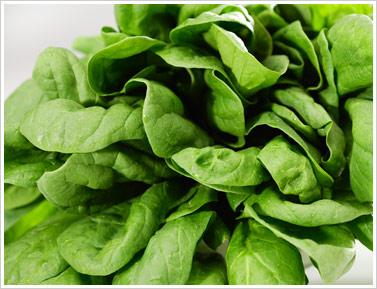 http://www.muranakafarm.com/img/inside_products_spinach.jpg